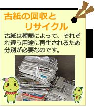 古紙の回収とリサイクル